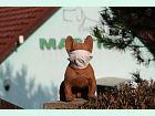 Hotel Mastibe: :-(